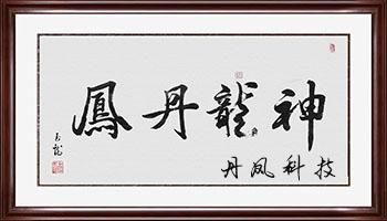 丹凤科技旗下最新转发平台大全